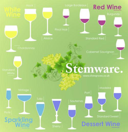 Stemware infograph